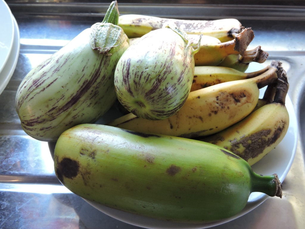 fresh eggplant, bananas and plantain-- vinaka na!